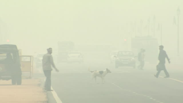 hazy new delhi in severe air pollution, india - luftverschmutzung stock-videos und b-roll-filmmaterial