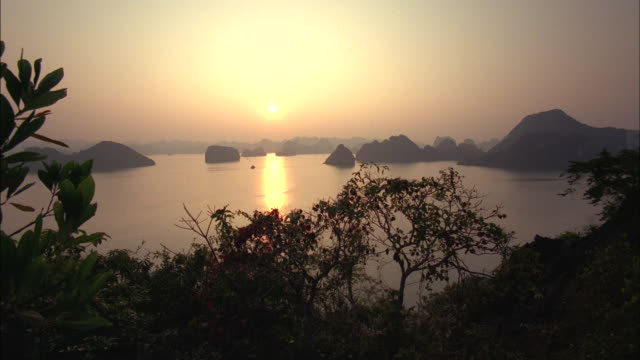 Hazy sunlight glows over the Vietnam jungle.