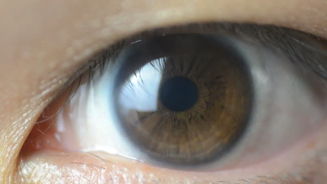 hd:asian human eye macro lens - brown stock videos & royalty-free footage