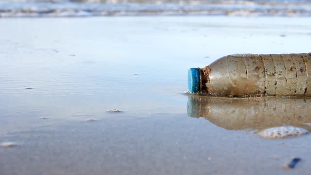 hd:environmental pollution, plastic bottle on the beach. - bottiglia video stock e b–roll