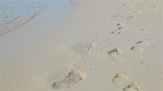 hd:footsteps of people walking on the beach. - footprint stock videos and b-roll footage