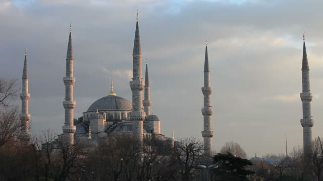 hd:istanbul - medium group of animals stock videos & royalty-free footage