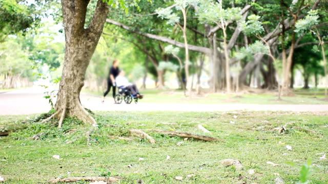 vídeos de stock e filmes b-roll de hd:man in wheelchair with partner in the park. - paralisia
