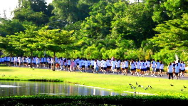 hd:marathon running in the park(soft focus) - soft focus stock videos & royalty-free footage