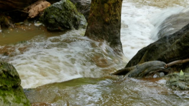 vídeos de stock, filmes e b-roll de hd: pan-cascata - curso de água