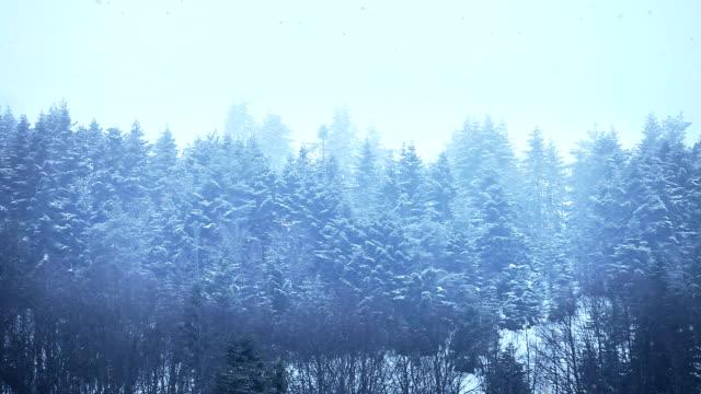 HD:Snowy Winter Landscape