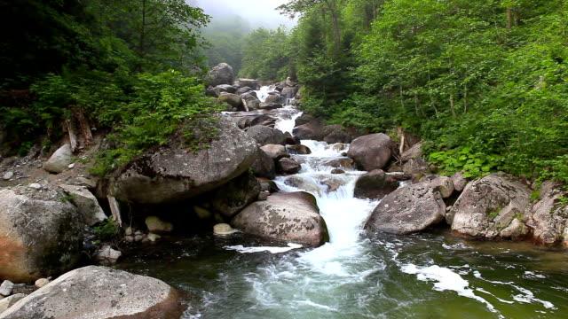 hd:storm creek, storm valley, **firtina vadisi**, rize, turkey - earth goddess stock videos & royalty-free footage