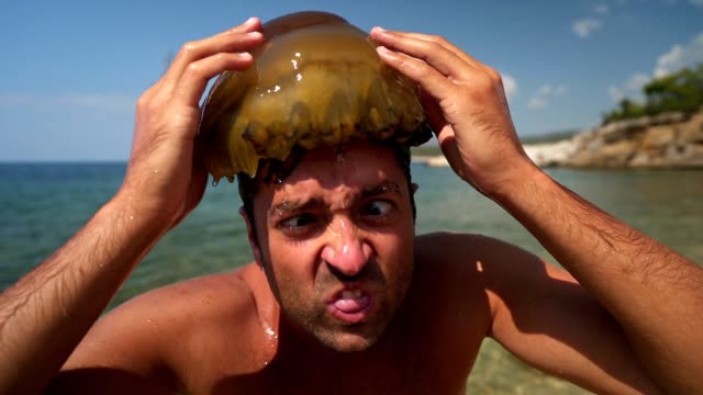 he have no fear from jellyfish - exoticism stock videos & royalty-free footage