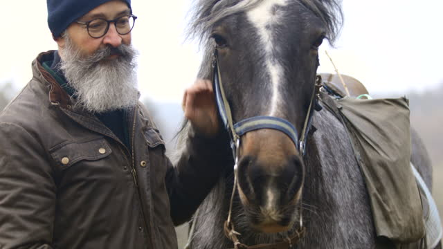 he loves his horse - bridle stock videos & royalty-free footage