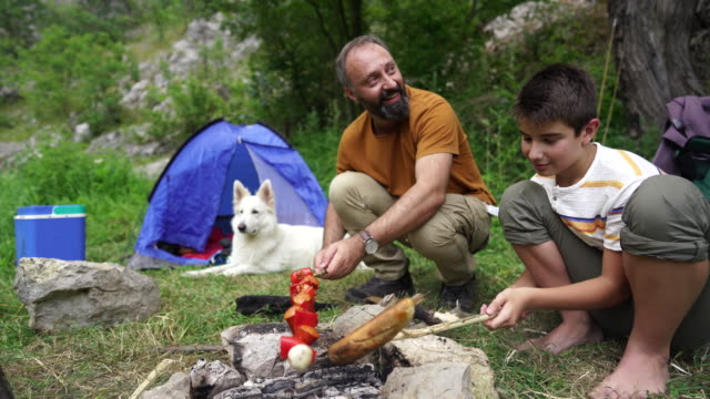head chefs on camping day - skewer stock videos & royalty-free footage