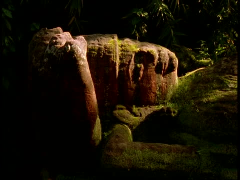 cu head of hindu statue in jungle, bandhavgarh national park, india - national icon stock videos & royalty-free footage
