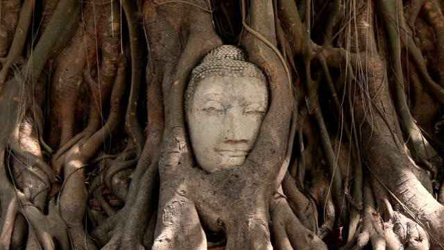 head of sandstone buddha - sculpture stock videos & royalty-free footage