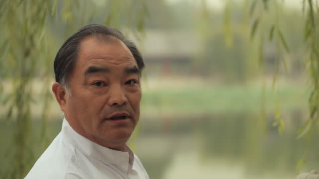 ms head shot of mature man smiling and laughing outdoors / china - only mature men stock videos & royalty-free footage