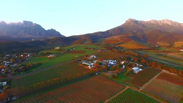 vídeos y material grabado en eventos de stock de partida en la granja - cabo winelands