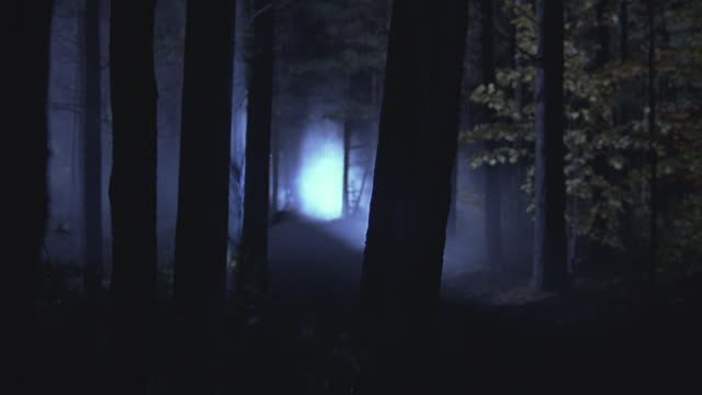 A headlight cutting through the fog and darkness of a forest.