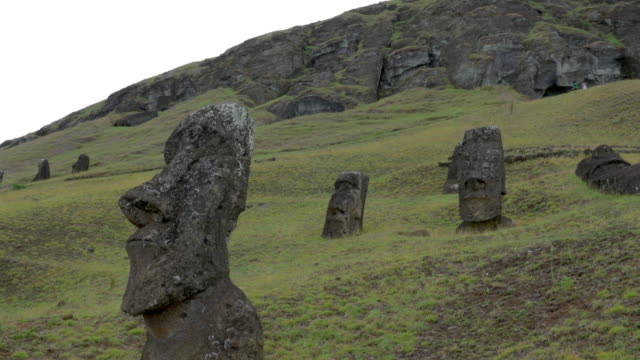 heads of moai statues - polynesian culture stock videos & royalty-free footage