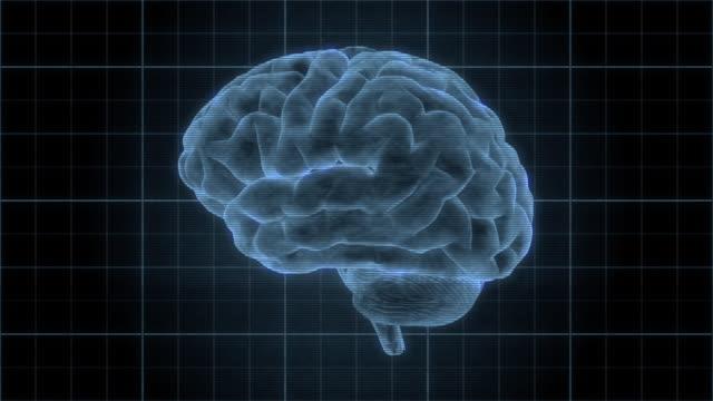 vidéos et rushes de heads up display element of a holographic human brain rotating - santé mentale