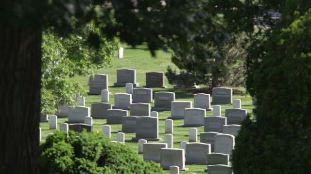 vídeos de stock e filmes b-roll de headstones in arlington national cemetery framed in leafy branches. shot in may 2012. - cemitério nacional de arlington