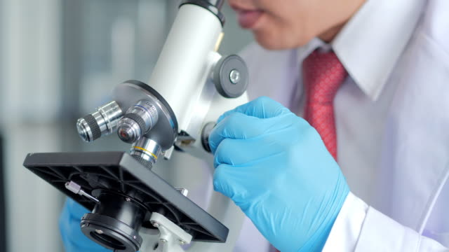 health care researchers working in life science laboratory. young male research scientist preparing and analyzing microscope slides in research lab.science laboratory - medical sample stock videos & royalty-free footage