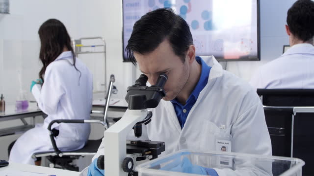 Health care researchers working in life science laboratory. Young female research scientist and male supervisor preparing and analyzing microscope slides in research lab.