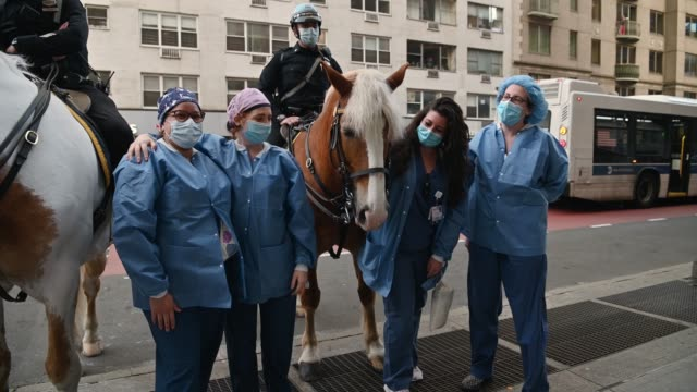 health care workers pet and pose with new york city police department mounted unit horses before the nightly #clapbecausewecare at lenox hill... - nutztier oder haustier stock-videos und b-roll-filmmaterial