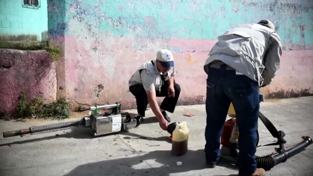 health ministry employees fumigateed against the aedes aegypti mosquito a vector of the dengue zika and chikungunya viruses on friday in the la... - virus zika video stock e b–roll