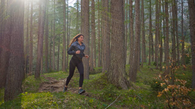 日当たりの良い森を通って自然の中で屋外でジョギングする健康志向の女性 - 女子トラック競技点の映像素材/bロール