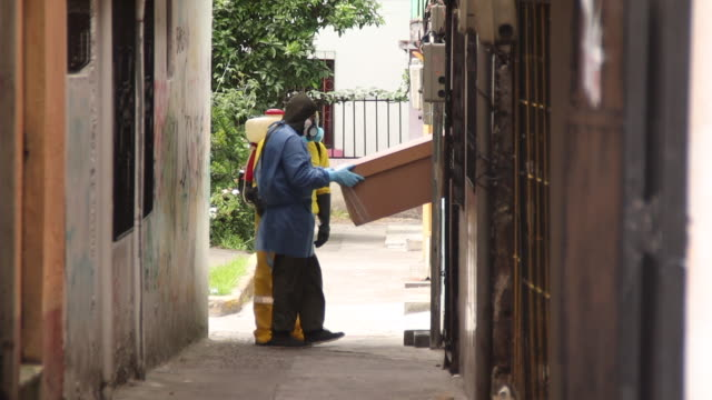 quito pichincha ecuador august 14th 2020 health personnel and forensics enter home to collect a dead body possible covid victim - eventuell stock-videos und b-roll-filmmaterial