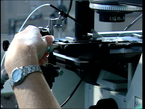 stem cell research itn lab technician looking at sample through microscope during stem cell research css petri dish under microscope as cell samples... - stammzelle stock-videos und b-roll-filmmaterial
