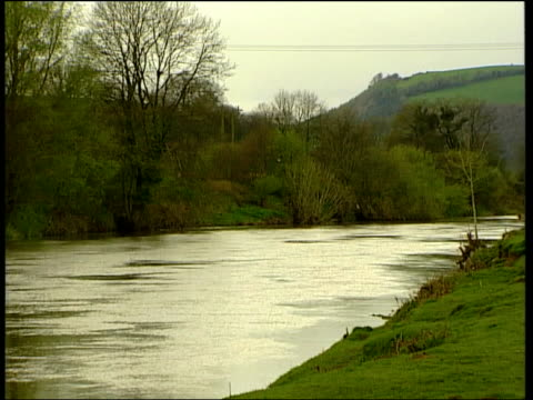 vídeos y material grabado en eventos de stock de superbug linked to crohns disease wales cardiff river taff pull out river flowing along hermontaylor interview sot must recognise there is a problem... - antibiotic resistant