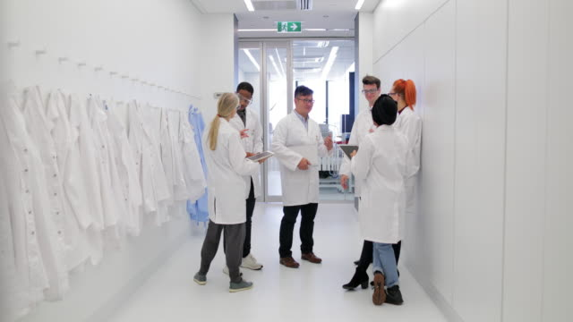 healthcare professionals in the workplace - lab coat stock videos & royalty-free footage