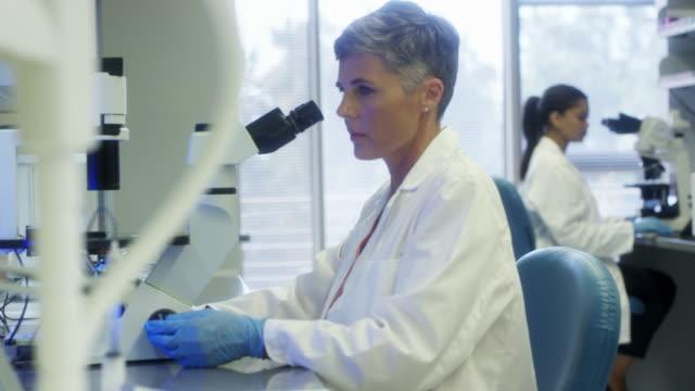 顕微鏡で調べる医療従事者 - バイオテクノロジー点の映像素材/bロール