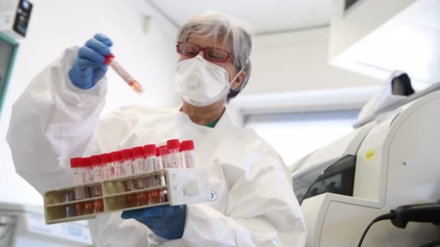 healthcare workers work on the preparation of evaluation swabs for coronavirus in the research laboratory of the amedeo di savoia hospital in turin... - laboratory stock-videos und b-roll-filmmaterial