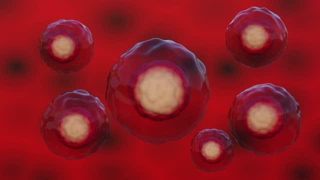 vídeos de stock e filmes b-roll de healthy blue cells turn into sick red cells. poisoning, infection concept. medicine and healthcare. 3d animation. - mutação genética