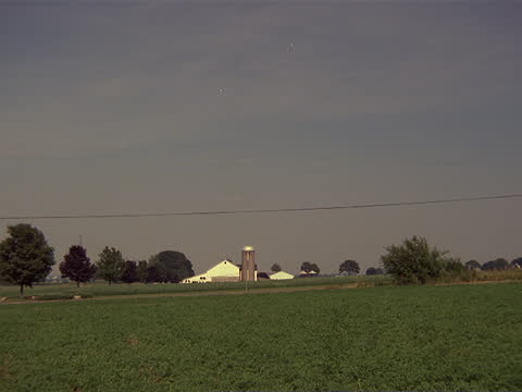 stockvideo's en b-roll-footage met healthy crops fill farm fields in amish country. - amish
