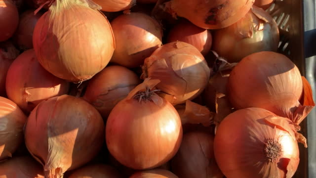 healthy diet - vegetarian food - onion stock videos & royalty-free footage