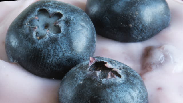 healthy eating: zoom out of blueberries over a flavoured yogurt - blueberry stock videos and b-roll footage