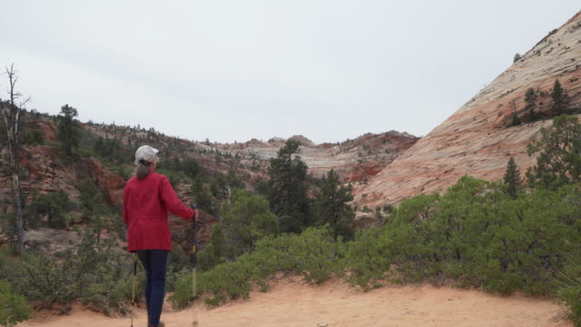 healthy elderly woman hiking in zion utah with view of red sandstone canyon - sandstone stock videos & royalty-free footage