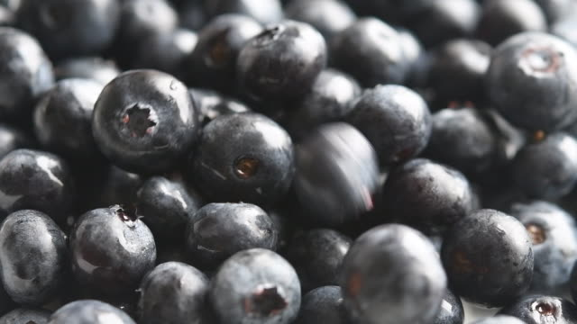 healthy food: blueberry fruits falling over a heap of other blueberries - vitamin a nutrient stock videos & royalty-free footage