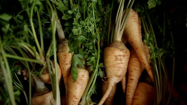 healthy food-parsley - cinemanis videography stock videos & royalty-free footage
