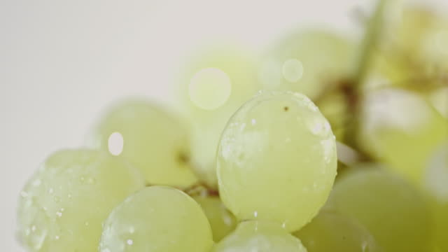 Healthy Grapes with Water Drops
