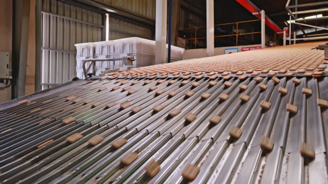 heap of biscuits traveling down the production line - biscuit stock videos & royalty-free footage