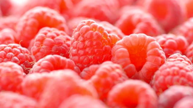 vídeos y material grabado en eventos de stock de pila de frambuesas, acercamiento - frutas del bosque