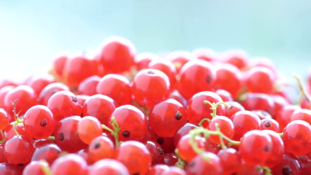 heap of redcurrant, close up - spinning point of view stock videos & royalty-free footage
