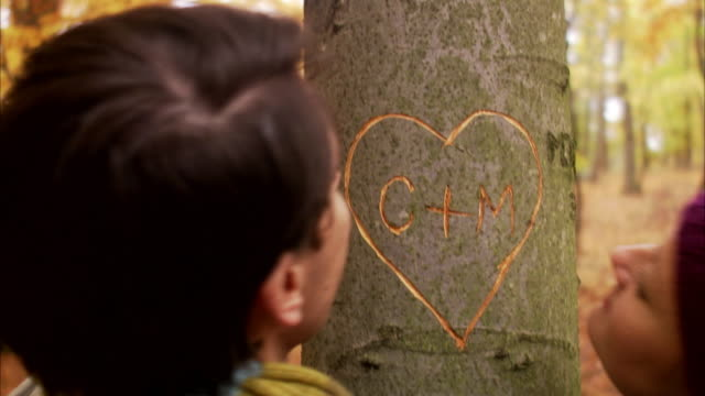 vidéos et rushes de a heart carved on a tree trunk sweden. - tronc d'arbre