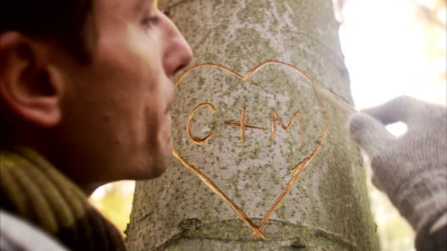vidéos et rushes de a heart carved on a tree trunk sweden. - zone arborée