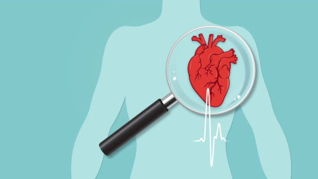 heart checkup - illustration stock videos & royalty-free footage