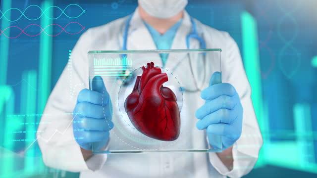 heart medical exam - 4k resolution - biomedical illustration stock videos & royalty-free footage