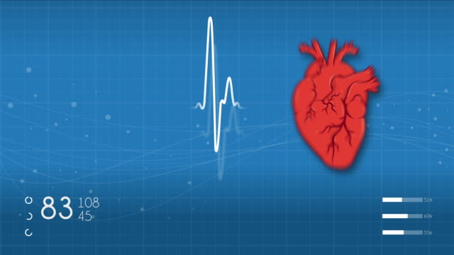 heart monitor - artery stock videos & royalty-free footage