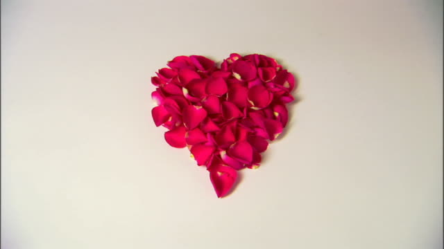 a heart of rose petals is blown away to a white background. - rose petal stock videos & royalty-free footage